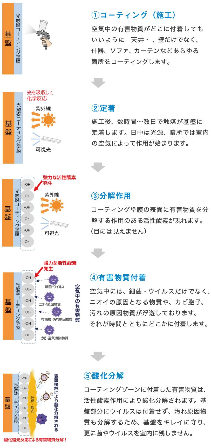 有害物質分解の仕組み3